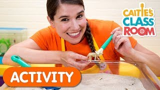 Digging For Dinosaurs | Caitie's Classroom | Activities For Kids