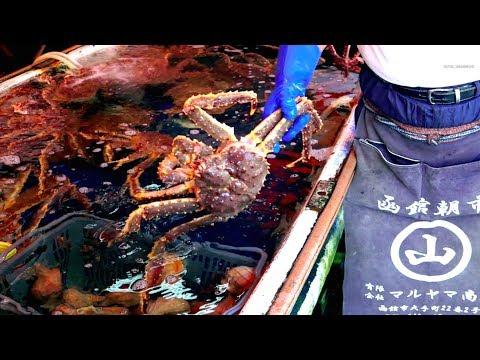 Hakodate Seafood Market - Japan