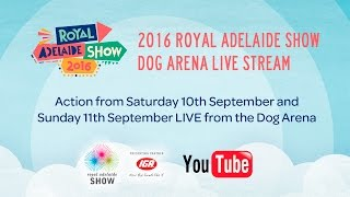 2016 Royal Adelaide Show Dog Arena Live Stream