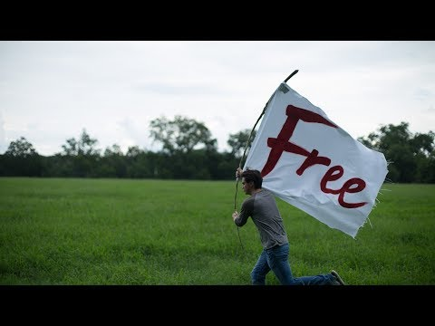 Free - Freedom from Fear