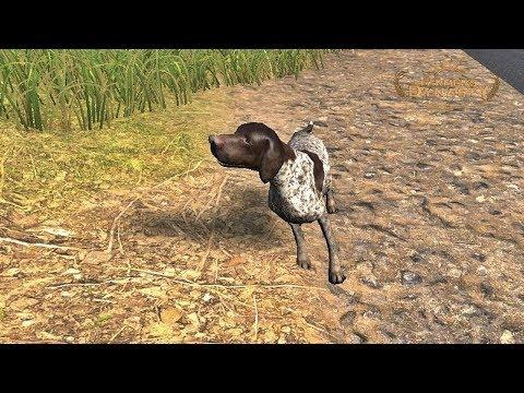 Znalazłem porzuconego psa. ☆ Farmer's Dynasty ☆ #43 ㋡ Anton
