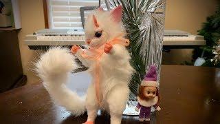 Elf on the Shelf: The Gekalop!