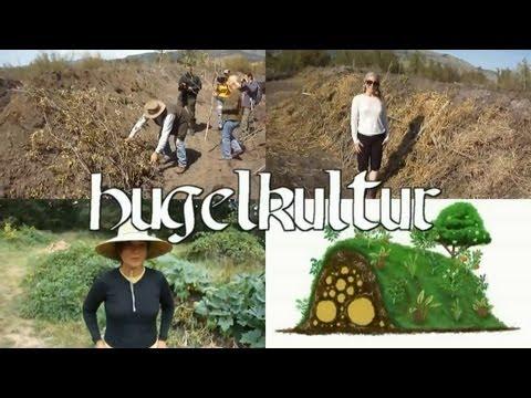 hugelkultur - the ultimate raised garden beds, gardening without irrigation