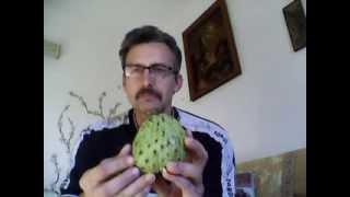 уникальный фрукт проти в рака