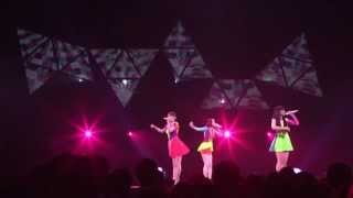 Perfume Have a Stroll