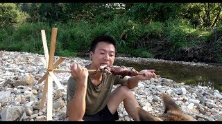华农兄弟:这个竹鼠中暑了,抢救后还是不行,只好拿去河边烤了