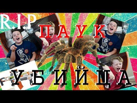 ПАУК - УБИЙЦА АТАКУЕТ ДЕТЕЙ///  ExtremeToys TV на русском от команды OBO VSEM (RUS)