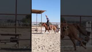 Do not attempt: stunt performed by professional 15yearold girl. Trick Riding!! #shorts