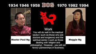 Canadian Chinese, Fengshui Master, Paul Ng, 2020, Zodiac Animal Predictions, Dog