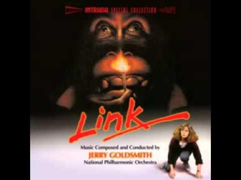 LINK      (BRAVO LINK)