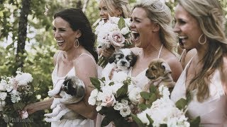 SURPRISE WEDDING PUPPIES!! - Bride's sister plans puppies for photos