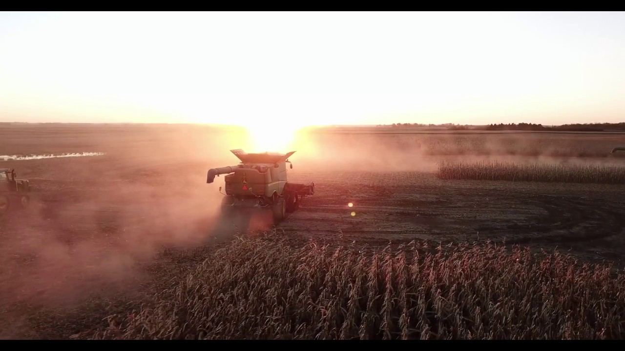 Harvest 2018 | DJI Mavic Pro 4K | Hook Farms