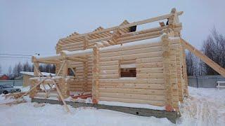 Как правильно строить дома из оцилиндрованного бревна от фундамента до крыши?!