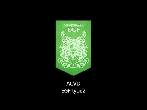 [ACVD]EGF type2