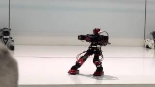 Humanoid Robot - Kungfu Robot - Fighting Robot