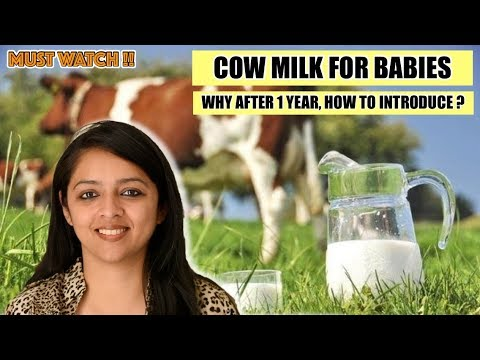 Cow's Milk Formula for Babies