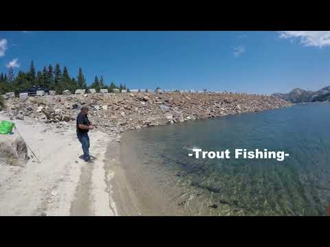 Loon Lake Ca, Trout Fishing 2017