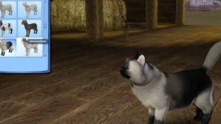 The Sims 3 - Create A Pet Demo.mp4