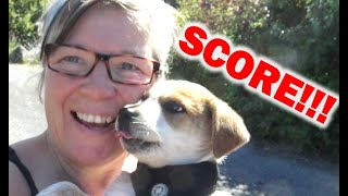 solo-woman-rv-life-i-score-big-on-a-travel-day