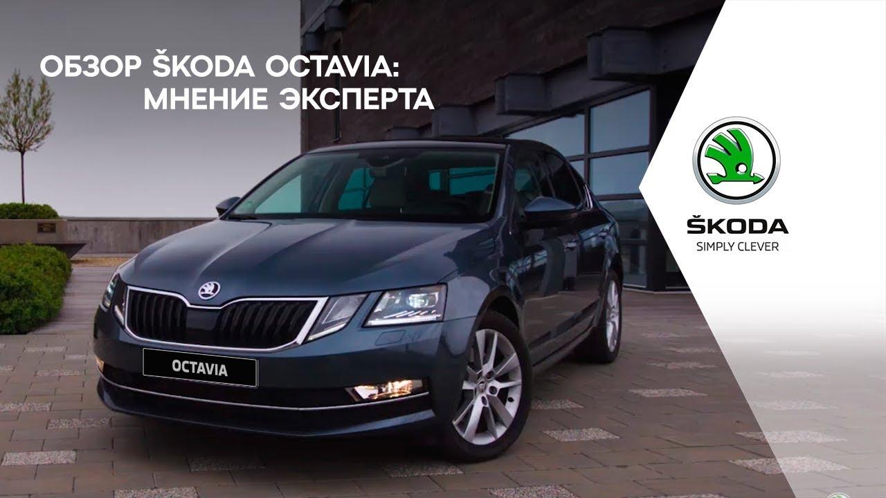 Обзор ŠKODA OCTAVIA: мнение эксперта - YouTube