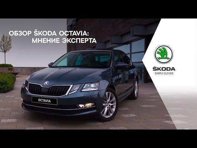 Обзор ŠKODA OCTAVIA: мнение эксперта