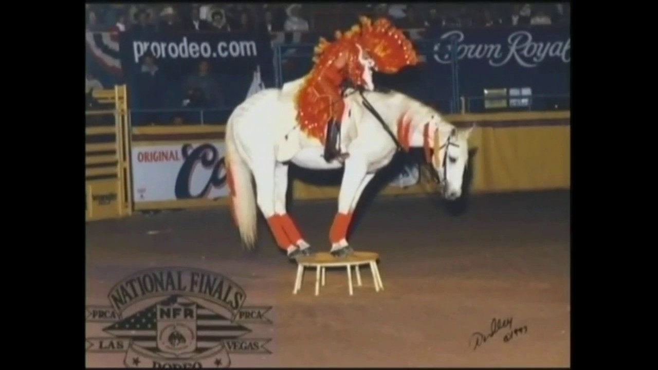 2008 PRCA Hall Of Fame Short 1