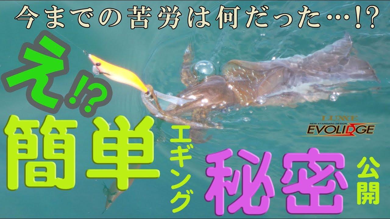 イカが釣れる条件