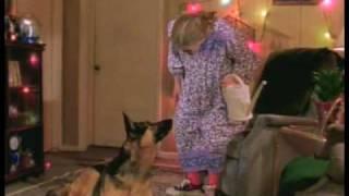 A Dog's Tale trailer