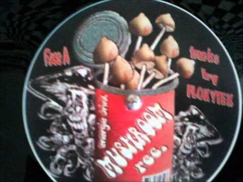 Mushroom Records 002 Floxytek A1