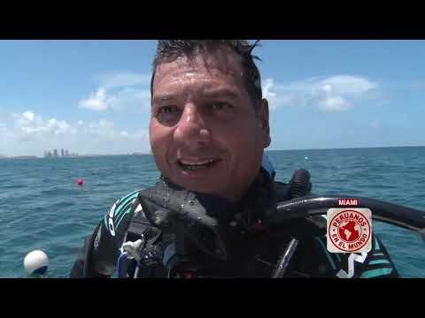 Peruanos en el Mundo: SE Florida
