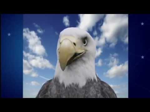 Eddie The Eagle Schools Teri Tonioli