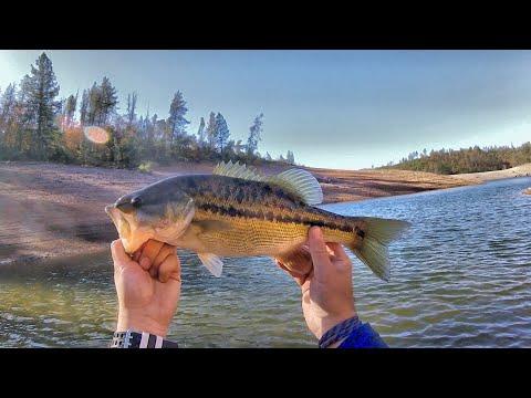 KAYAK FISHING SHASTA LAKE