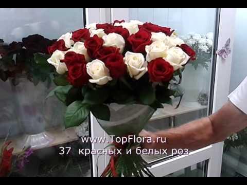 37 белых и красных роз от TopFlora.ru