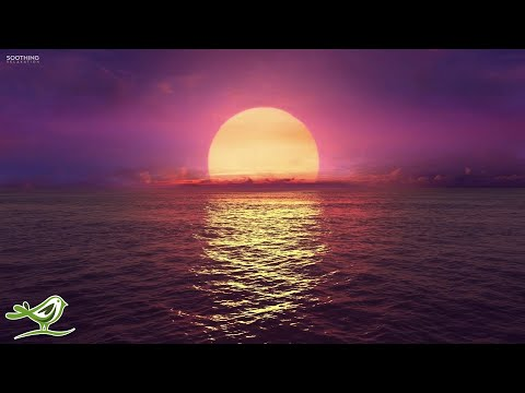 8 Hours of Relaxing Sleep Music: Ocean Waves, Relaxing Music, Sleeping Music, Calming Music ★146