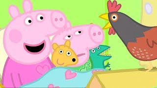 Peppa Pig Channel | Peppa Pig Meets Granny Pig's Chickens