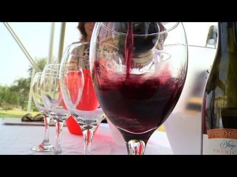 Tunisia looks to branch out into wine tourism