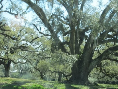 Road Trip to Uncle Toms Cabin and Historic Greenwood Plantation