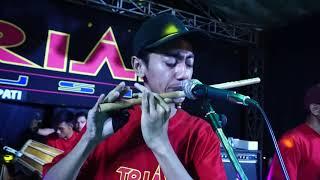 Download BAGAI RANTING YANG KERING SELLI PRAWOTO TRIASMUSIC GUNUNGREJO Mp3