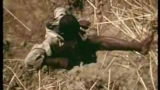 Como cazar 1 piton