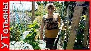 Мучнистая роса на розах - как избавиться, меры борьбы и лечение народными средствами (видео)