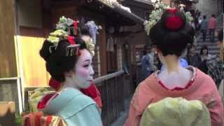 Maiko out for a walk, even not dressed up, cause quite a ruckus whe...