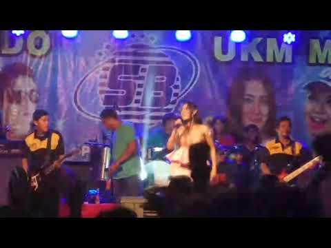 Vita Alvia _ Jaran goyang live Bali