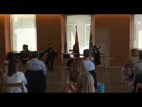 Doble sesión de música clásica en Viveiro