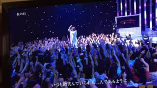 aiko - 桜の時