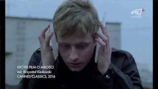 Między filmami - Cannes 2016 - Krzysztof Kieślowski