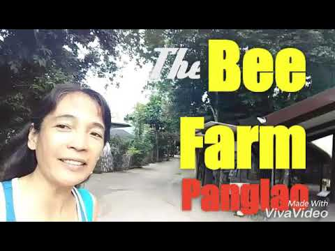 The BEE FARM a place to stay and dine in Panglao, Bohol for organic farm to table food