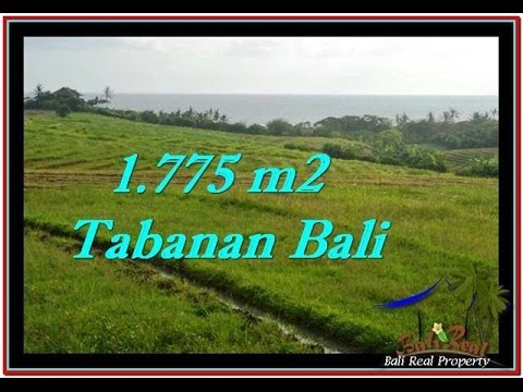 LAND IN TABANAN BALI FOR SALE with Ocean View TJTB251