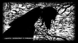 Stielas Storhett - Taedium Vitae