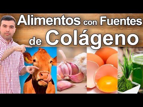 El Colageno - 12 Alimentos y Fuentes de Colageno Hidrolizado para Tu Piel, Huesos, Cabello y Salud