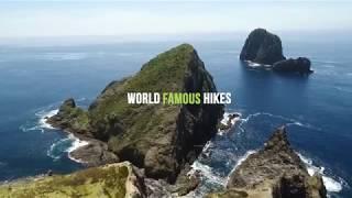 Ultimate North Island Adventure 'Kauri' Trip Highlights